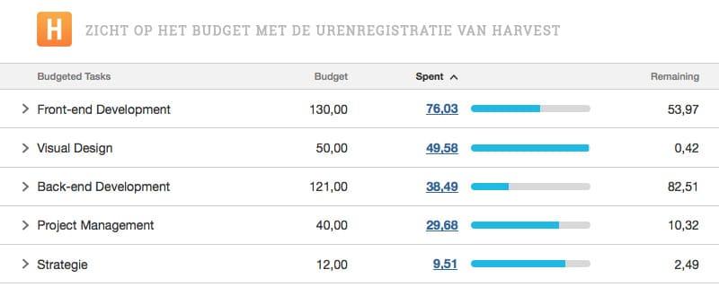 Een voorbeeld van hoe we bij Elephant het budget bijhouden