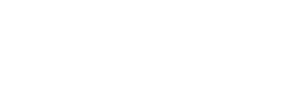 Emerce Badge Top 100 2021